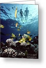 Molokini Snorkeling Couple Greeting Card