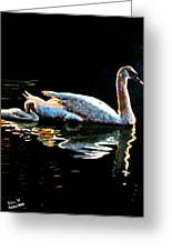 Mom And Baby Swan Greeting Card