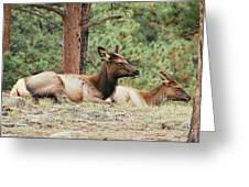 Mom And Kids Taking A Nap Greeting Card