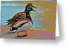 Mom And Pop At The River Greeting Card