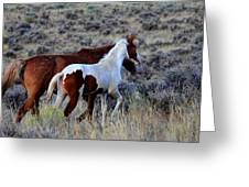 Mom And The Filly Leaving Greeting Card
