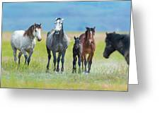 Mom, Dad, And Two Colts Greeting Card