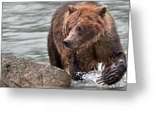 Mom Hunts Haines, Alaska Greeting Card