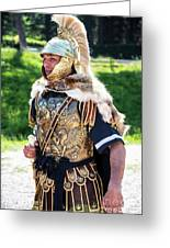 Watchful Roman Legionnary Soldier Greeting Card