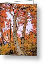 Moments Of Fall Greeting Card