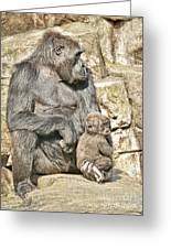 Momma And Baby Gorilla Greeting Card