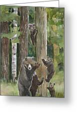 Momma With 4 Bear Cubs Greeting Card
