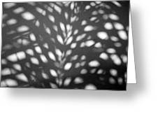 Monadas Limited Edition 1/1 Greeting Card