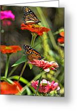 Monarch 8 Greeting Card