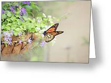 Monarch And Garden Basket Greeting Card