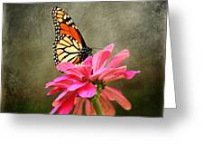 Monarch Butterfly And Pink Zinnia Greeting Card
