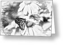 Monarch Butterfly Art 2 Greeting Card