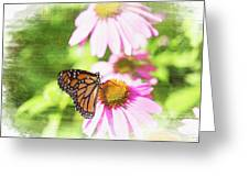 Monarch Butterfly Art Greeting Card