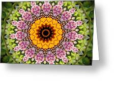 Monarch Butterfly On Milkweed Kaleidoscope Greeting Card