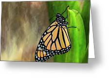 Monarch Butterfly Poised On Green Stem Greeting Card