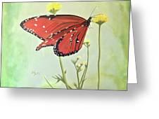 Monarch On Milkweed Greeting Card