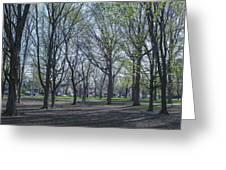 Monarch Park - 1100 Greeting Card