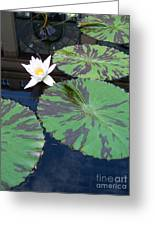 Monet Lilies White  Greeting Card