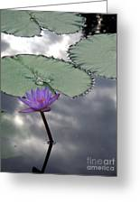 Monet Lily Pond Reflection  Greeting Card