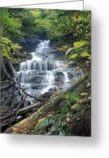 Money Brook Falls Mount Greylock Greeting Card