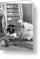 Monkey On The Ship Greeting Card