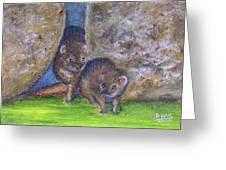 Mongoose #511 Greeting Card