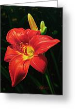 Monikas Red Lily Greeting Card