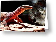Monitor Lizard Greeting Card