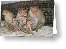 Monkey Family Tiruvannamalai India Greeting Card