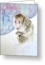 Monkey In Meditation Greeting Card
