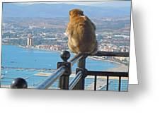 Monkey Overlooking Spain Greeting Card