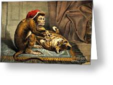 Monkey Physician Examining Cat For Fleas Greeting Card