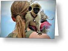 Monkeying Around Greeting Card