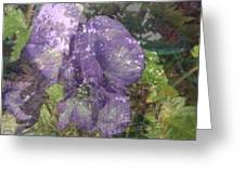 Monkshood Greeting Card