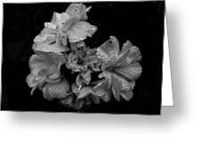 Mono Flower Chrome Greeting Card