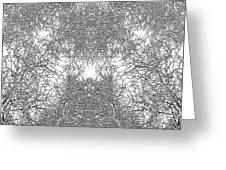 Mono Trees Greeting Card