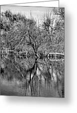 Monochrome Autumn Reflections Greeting Card