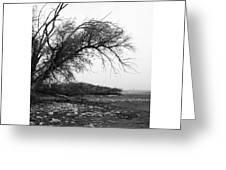 #monochrome #lake #landscape  #stausee Greeting Card