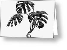 Monstera Leaf-black Greeting Card