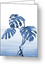 Monstera Leaf-blue Greeting Card