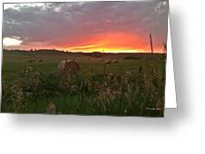 Montana Hayfield Sunset Greeting Card