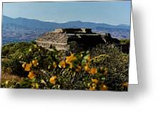 Monte Alban 4 Greeting Card