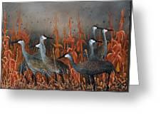 Monte Vista Sandhill Cranes Greeting Card