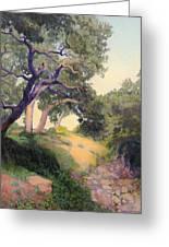 Montecito Dry River Oaks Greeting Card