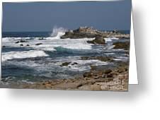 Monterey Coastline Greeting Card