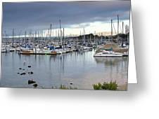 Monterey Harbor - California Greeting Card by Brendan Reals