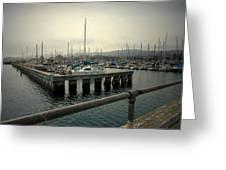 Monterey Marina Greeting Card