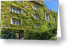 Montmarte Paris Ivy Covered Building Greeting Card
