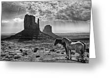 Monument Valley Horses Greeting Card
