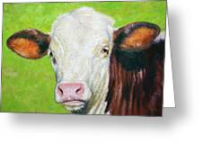 Moo Greeting Card